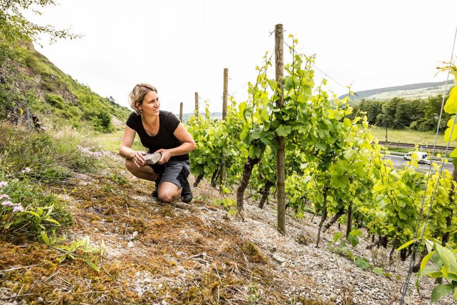 Weingut Christine Pröstler
